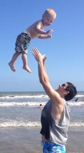 Gray flying at beach